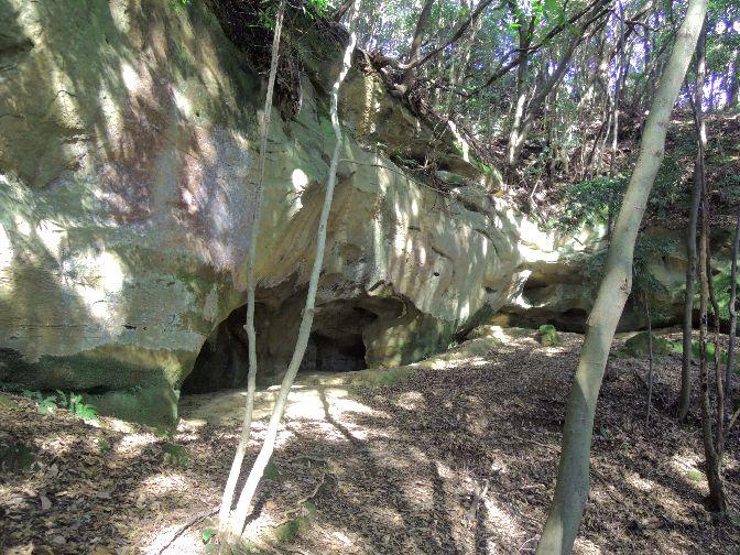 泉福寺洞窟11