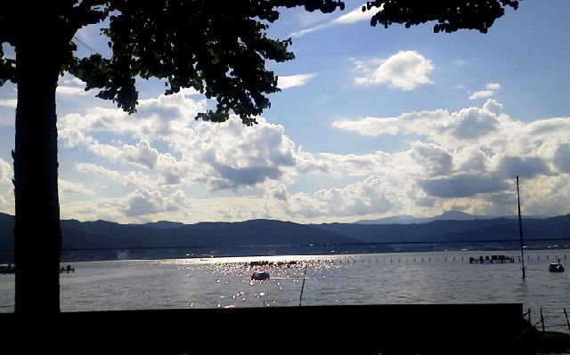 諏訪湖市畔公園