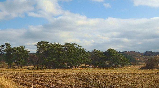 象潟駅から象潟・九十九島の行き方と九十九島ができた理由