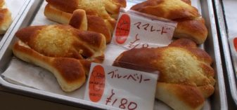 水虫パンを買って埼玉に帰る‥青春18きっぷで宮城&福島⑦