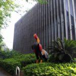 経堂駅から東京農業大学「食と農」の博物館へ散策する。
