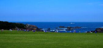 種差海岸(種差天然芝生地)を観光【画像大量】海カフェ たねさし・淀の松原