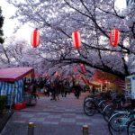 桜が見ごろの夕暮れ時、西鉄久留米駅周辺を気ままに歩く【レトロ建築めぐり】